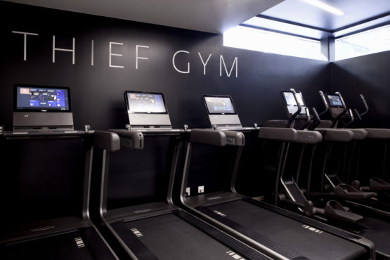 THIEF GYM